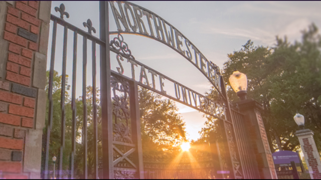 NSU spring enrollment increases by 540