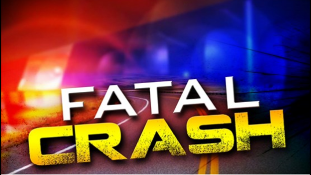 Two people, pet dog die in separate crashes in Caddo Parish