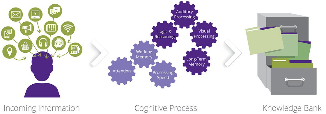 cognitive processes critical thinking