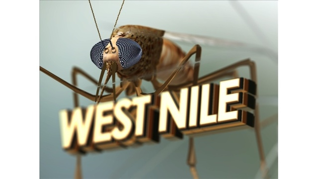 Confirmed case of West Nile virus in York County