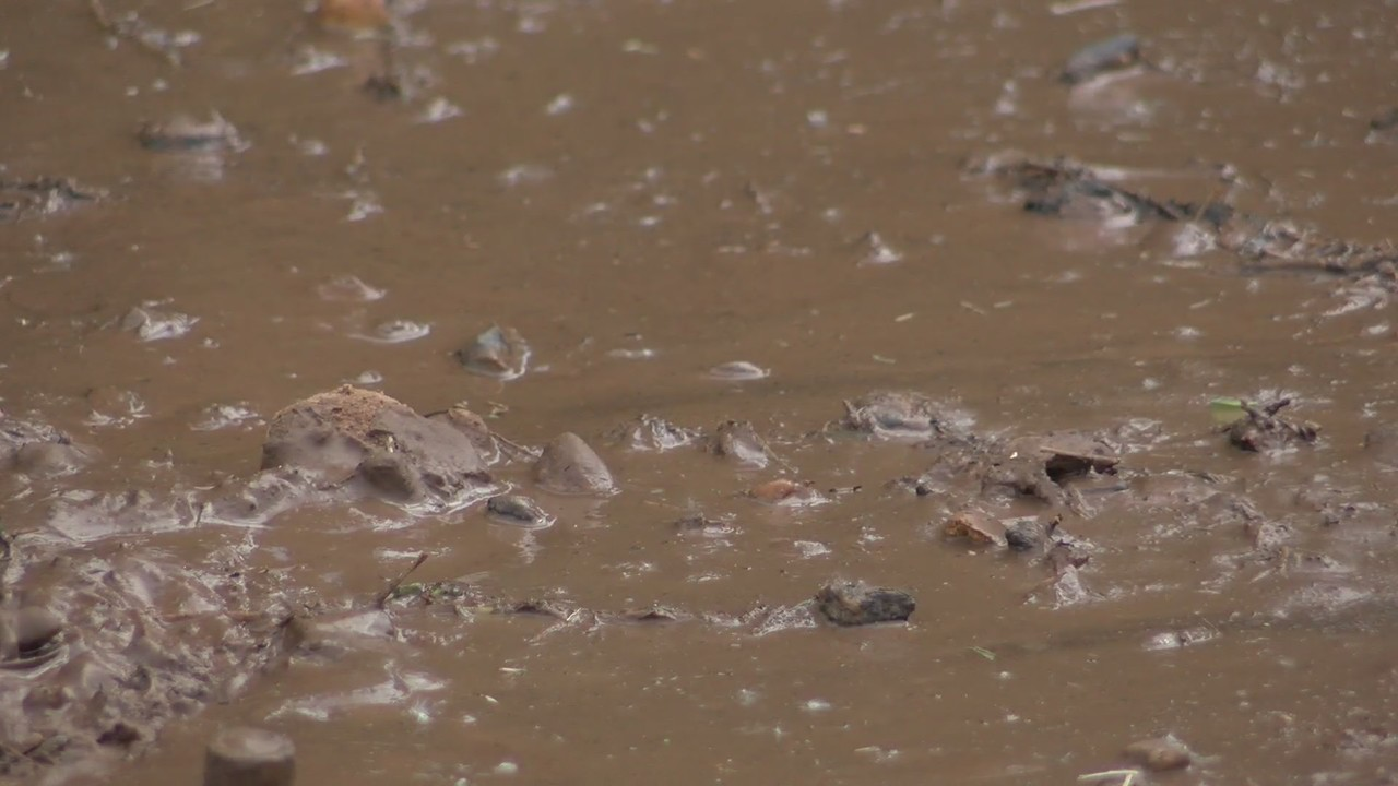 Apartment residents complain of sewer leak